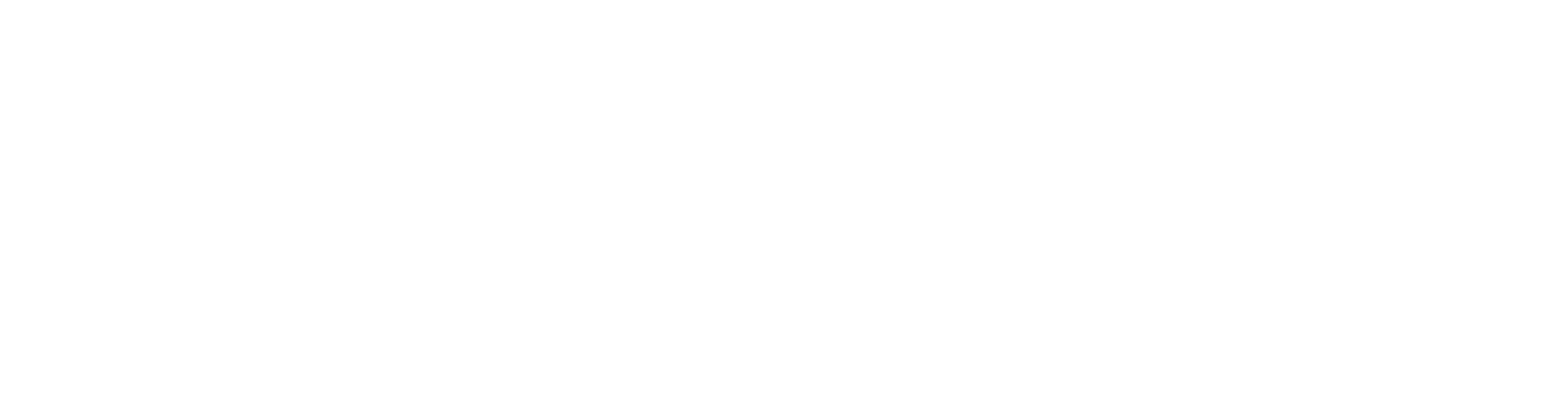 Transparent Logo